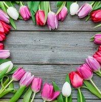 Wir wünschen alles Gute zum Muttertag