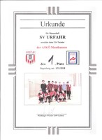 2. Turniersieg unserer U14 Mannschaft beim Turnier von Askö Mauthausen